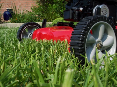 Three Ways To Go Green With Your Pensacola Landscaping Service